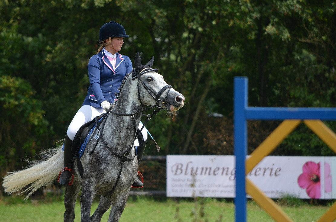 Ponys im Turniersport, Beispielbild Huskyherz, Pixabay